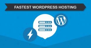 Fastest Wordpress Hosting 310x165 - Best Wordpress Hosting Companies
